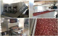 Yunting peanut roasting production line