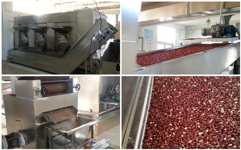 Peanut Roasting Production Line